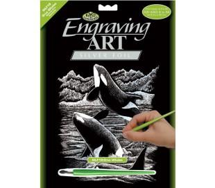 ערכת חריטה גדולה - לוויתנים מוכסף