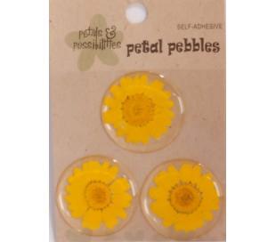 מדבקת פרחים אמיתיים באפוקסי - 3 צהוב