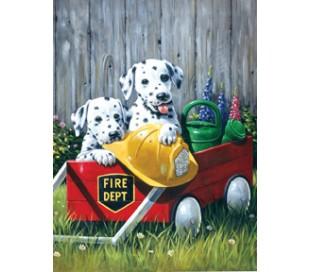 ערכת ציור לילדים - כלבלבים כבאים