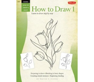 ספר ללימוד ציורי רישום - מתחילים