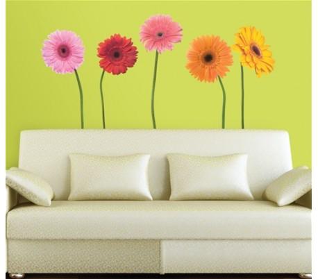 מדבקת קיר  גרברות צבעוניות- גדולה