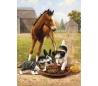 ערכת ציור לילדים - חברים בחווה