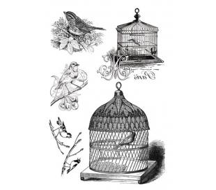 הדפס ציפורים להעברה לתוך עבודת יצירה