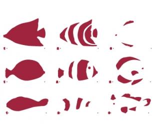 """שבלונות גדולות דגים טרופים 30*21 ס""""מ"""