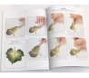 ספר ציור במשיכת מכחול אחת מאת דונה דוברי