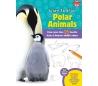 ספר לימוד ציור - חיות הקוטב הצפוני