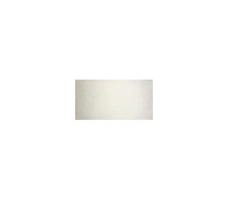 צבעי טוליפ תלת מימד במבחר 22 גוונים