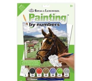 ערכת ציור לילדים - סוס סטליון