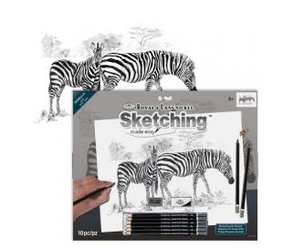 ערכה גדולה ללימוד רישום וציור - זברה