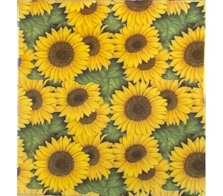 קרמיקה 15*15 בהדפס פרחים - חמניות