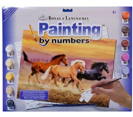 צביעה במספרים על פנל קנבס גדול - סוסי פרא