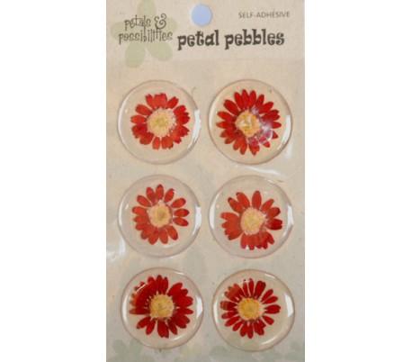 מדבקות פרחים באפוקסי - 6 חרציות אדומות