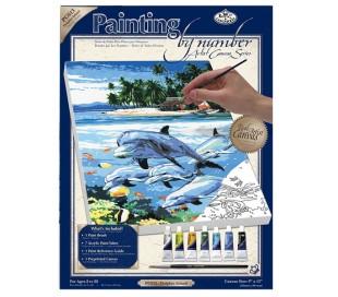 ערכת ציור לפי מספרים - אי הדולפינים