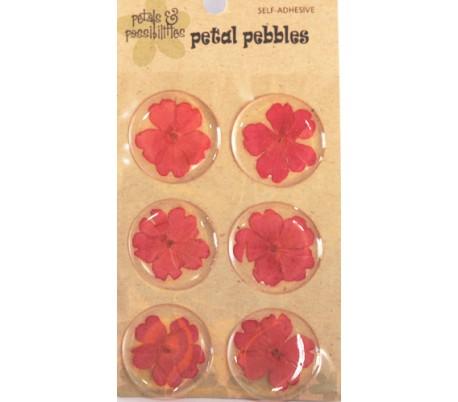 מדבקות פרח אמיתי בציפוי PVC - סט 6 בורוד