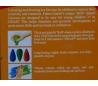 ב2. סט 4 צבעי קריון מיוחדים לאחיזה נוחה לילדים