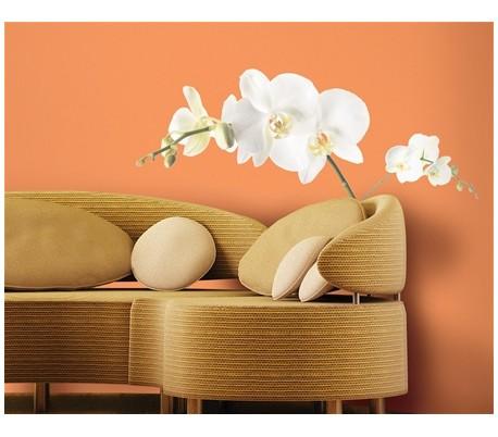 מדבקות קיר גדולה פרח סחלב לבן