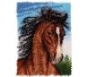 ערכה גדולה לאריגה בצמר 69*51 סמ - סוס