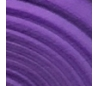 גיליוני סול במבחר 12 צבעים